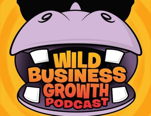 Wild Business Growth Podcast #2: Brendan O'Marra – Digital Marketing Director at Bic